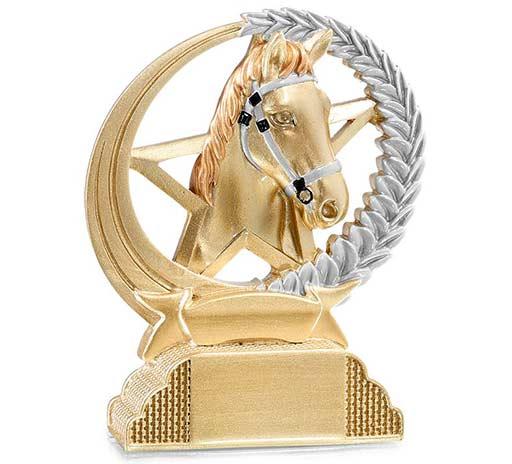 Récompenses sportives équitation à Vienne et Estrablin
